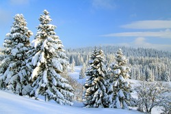 Winter in the Jura mountains - Western Switzerland