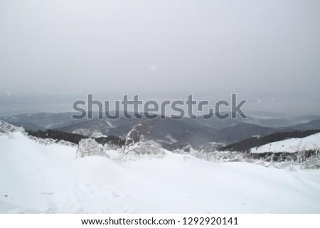 Winter in the mountains. Snowy slopes. Ski slopes Svidovets spine. Dragobrat Ukraine #1292920141