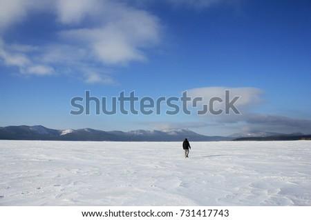Winter in the wilderness, Kazakhstan  #731417743