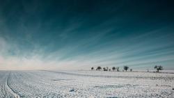 winter landscae field trees outdoor