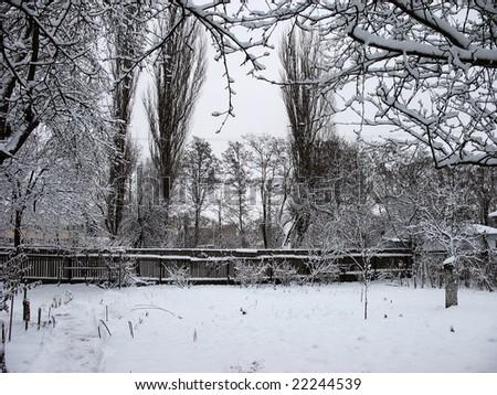 winter landscape #22244539