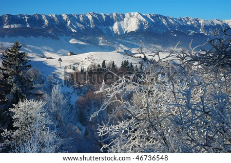 winter landscape #46736548