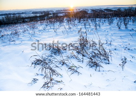 Winter Landscape at Glenbow Ranch Provincial Park, Alberta, Canada. Glenbow ranch is a historic ranch which has been converted into a natural reserve park near Calgary and Cochrane, Alberta, Canada