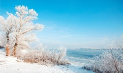 winter landscape, beach winter river and trees in hoarfrost, sunny winter landscape, frozen river in the winter, turquoise blue sunny sky, lake, ice
