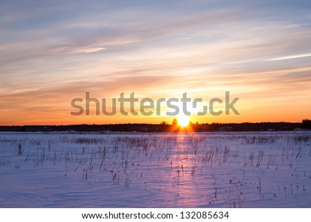Winter landscape. Composition of nature with sunset