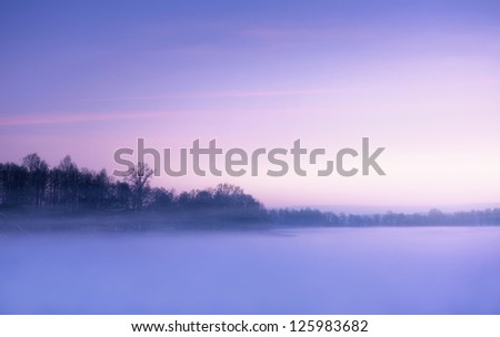 Winter landscape, foggy morning over frozen lake with copy space