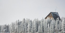winter landscape forest mountain environment triangle wooden cabin in pine tree wood land area scenic view snow fall December weather time before Christmas holidays