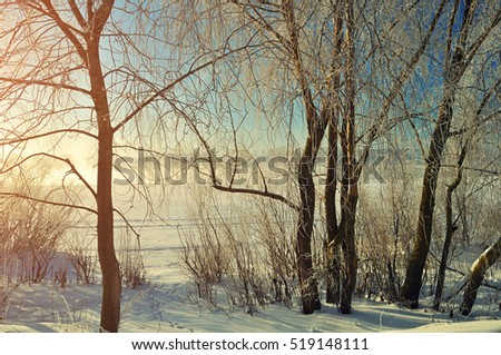 Winter landscape -  frosted trees near the winter river at the sunrise #519148111