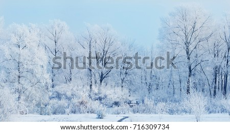 winter landscape, frozen river in the winter, turquoise blue sunny sky, lake, white background  #716309734