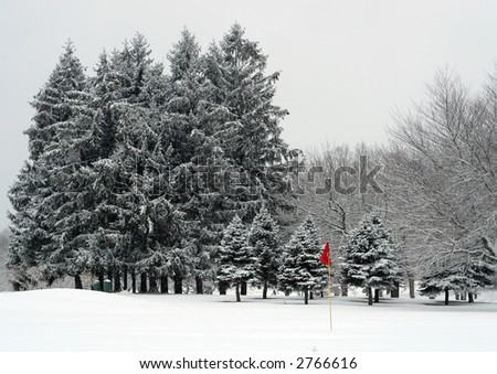 winter landscape; golf course
