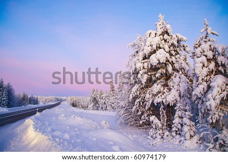 Winter landscape in Lapland Finland. The road, snow-covered trees, polar night.