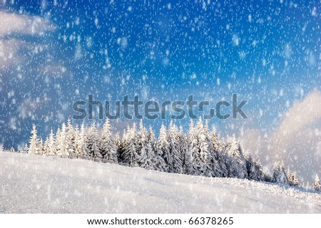 Winter landscape in mountains Carpathians, Ukraine and a valley with huts
