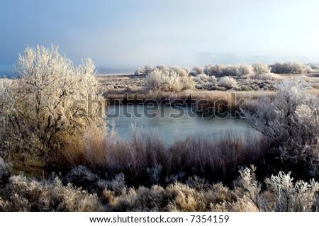 Winter landscape in rural Idaho