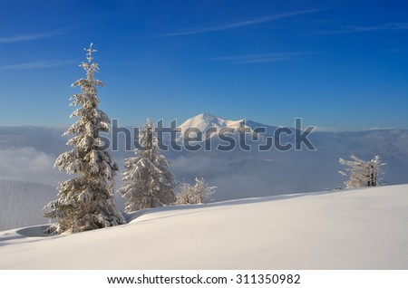 Winter landscape in sunny weather. Snow in the mountains. Christmas view. Carpathians, Ukraine, Europe