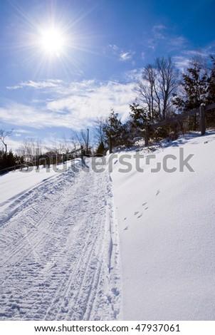 Winter landscape in the mountain