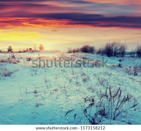 Winter landscape. Meadow under snow in wintry morning #1173158212