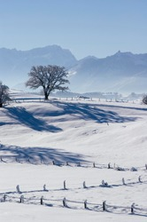 Winter landscape near Aidling Riegsee upper Bavaria Germany