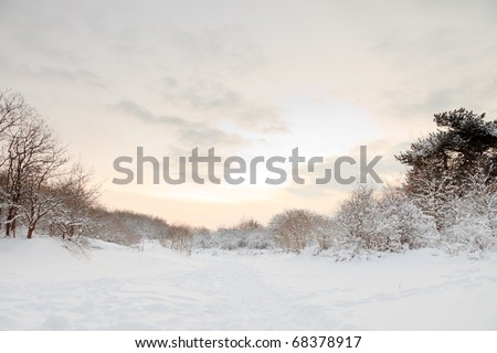 Winter landscape of dunes with snow at sunset