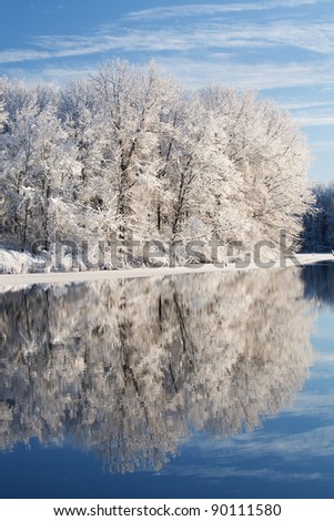 Winter landscape of snow covered trees on the shoreline of Jackson Hole Lake with reflections in calm water, Fort Custer State Park, Michigan, USA