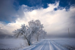 Winter landscape of snowy road near the woods covered with snow and hoarfrost on a cloudy day in Krimulda,Latvia