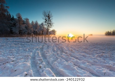 winter landscape of sunrise over field and trees