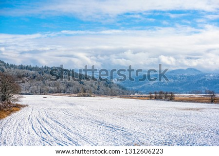 Winter landscape of the valley and hills covered with snow-covered trees, covered with snow and mountains hidden in the hanging clouds in the Columbia River Gorge National Recreation Reserve #1312606223