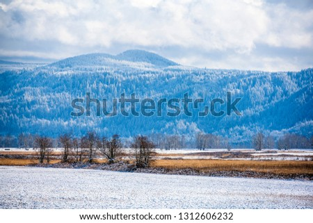 Winter landscape of the valley and hills covered with snow-covered trees, covered with snow and mountains hidden in the hanging clouds in the Columbia River Gorge National Recreation Reserve #1312606232