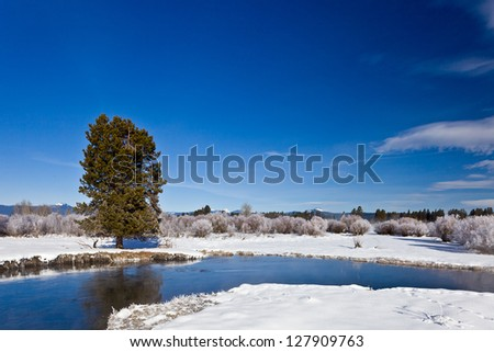 Winter landscape on a frosty day with a river.