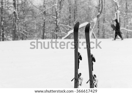 Winter landscape on mountain,ski in the snow.In the moment of taking a picture, it snowed. In the background is forest covered with snow.Skier is passing with his snowboard.Black and white photo.