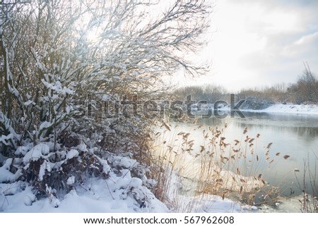 winter landscape on the river near the forest.Covered with snow and hoar frost forest on the banks of the river. #567962608