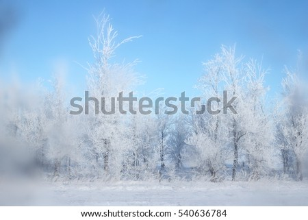 Winter, landscape,snow, #540636784
