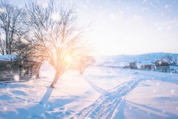 winter landscape. snow-capped trees silhouettes in mountains at sunrise sunset. natural background