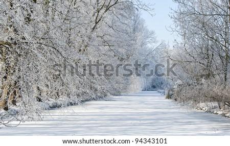 winter landscape sunny day Netherlands