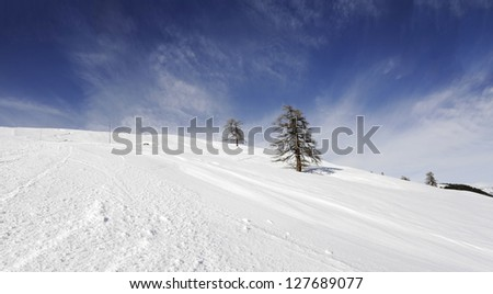 winter landscape with a blue sky