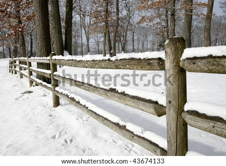 winter landscape with fence and trees
