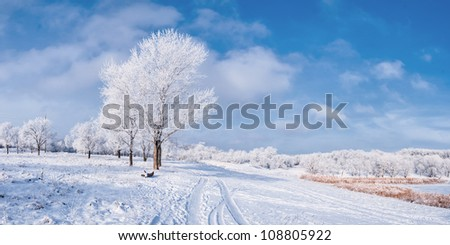 Winter landscape with frozen tree, road and blue sky with clouds. Panorama - stock photo