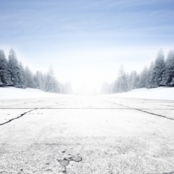 Winter landscape with road and trees