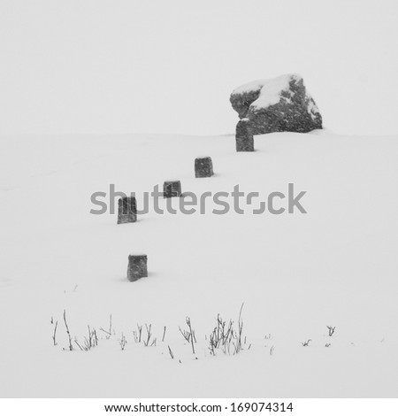 Winter landscape with rocks and dried plants