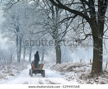 Winter landscape with rural wagon