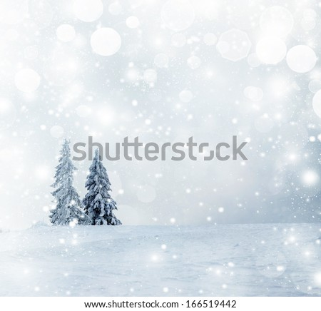 Winter landscape with snow covered firs - Shutterstock ID 166519442