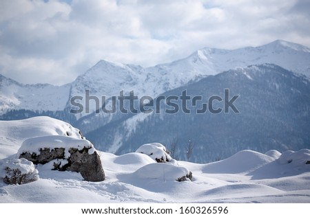 winter landscape with snow covered mountains, bohinj range, slovenia #160326596