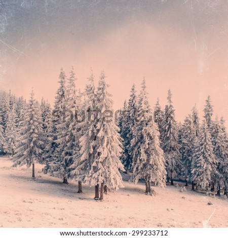 winter landscape with snow in...