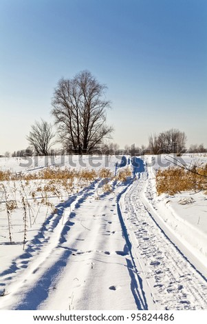 Winter landscape with snow. Russian winter.