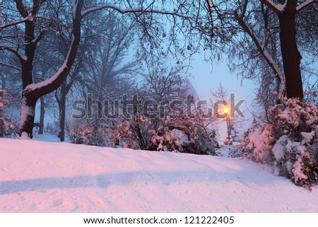 winter landscape with snowy trees and light of lantern