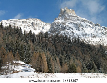 winter landscape with snowy windy rocks and green firs