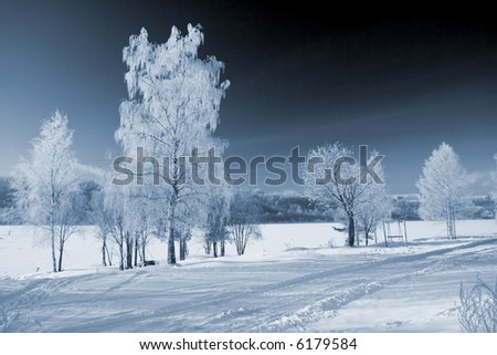 Winter landscape with the river and hoarfrost on trees