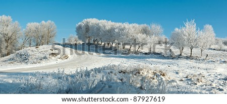 Winter landscape with trees covered with hoarfrost