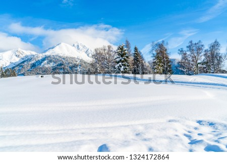 Winter landscape with with snow covered Alps in Seefeld in the Austrian state of Tyrol. Winter in Austria #1324172864