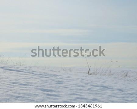 winter minimalistic landscape #1343461961