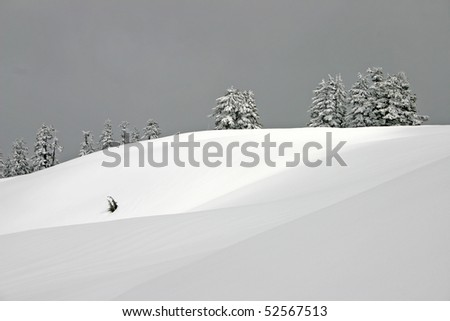 Winter mountain field view.